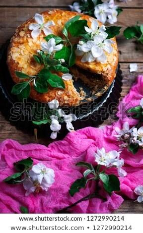 Podwoić czekolady Wielkanoc skupić selektywne focus stylu Zdjęcia stock © zoryanchik