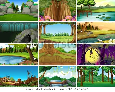 set of nature scenes stock photo © bluering