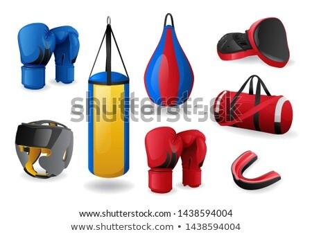 Azul esportes saco equipamento ícone Foto stock © MarySan