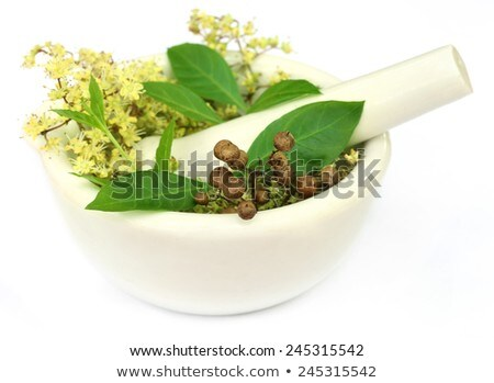 Ayurvedic henna leaves and flower Stock photo © bdspn