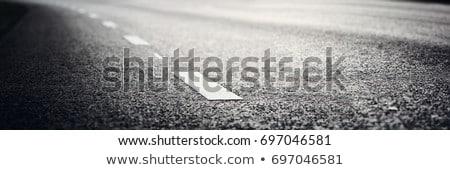 white Line on asphalt Stock photo © inxti
