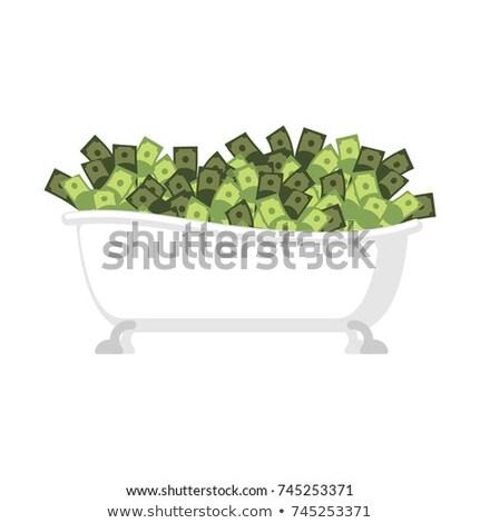 Fürdőkád pénz izolált tele pénz fürdőkád Stock fotó © popaukropa