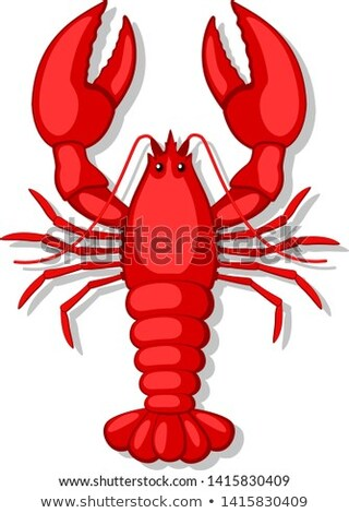 Boiled crayfish: top view Stock photo © Alex9500