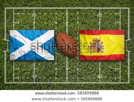 Scoţia vs steaguri Rugby câmp verde Imagine de stoc © kb-photodesign