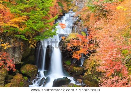 ryuzu waterfall autumn forest nikko japan stock photo © vichie81