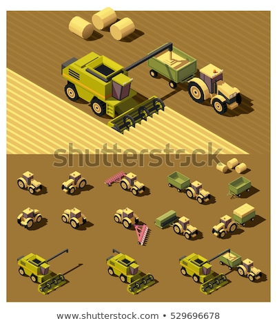 Vector isometric combine harvester in wheat field Stock photo © tele52