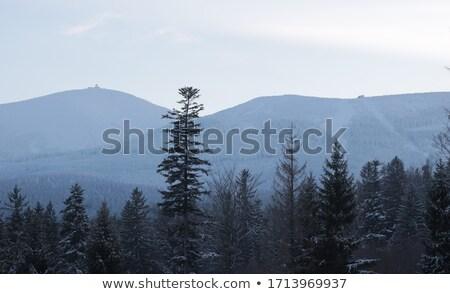 Giant Mountains 01 Stock photo © LianeM