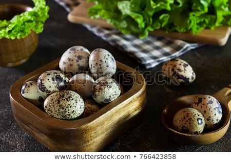 卵 · カラフル · 羽毛 · イースター · イースターエッグ · 明るい - ストックフォト © juniart