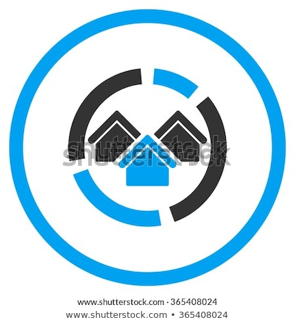 Realty diagram flat blue and white colors rounded glyph icon Stock photo © ahasoft