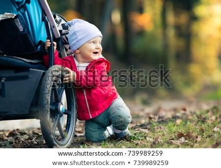 család · fiú · sétál · ősz · park · boldogság - stock fotó © blasbike