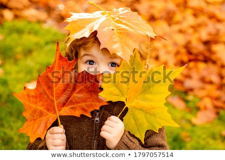 cute boy with autumn leaves in the park Stock photo © Lopolo