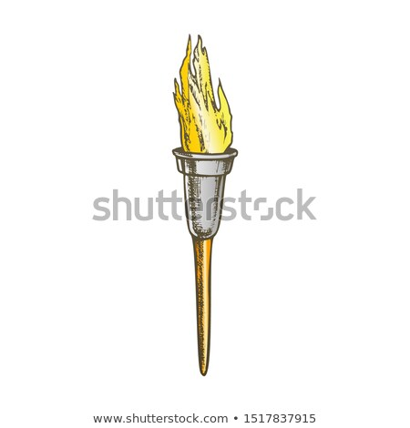 Torch Modern Metallic Burning Stick Color Vector Stock photo © pikepicture