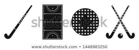 field hockey icon set Stock photo © bspsupanut