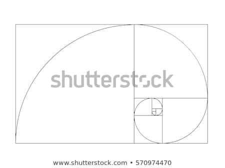 Altın vektör geometrik fibonacci formül dizayn Stok fotoğraf © beaubelle