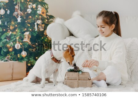 Horizontal shot of adorable small girl with pony tail, dressed in white winter sweater, sits crossed Stock photo © vkstudio