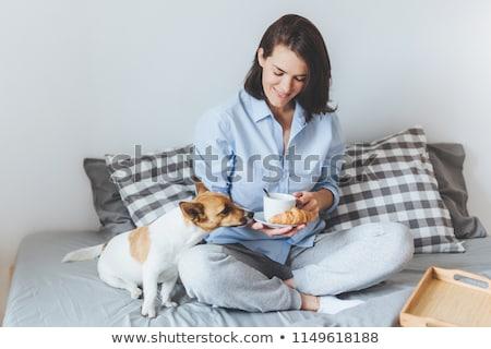 Díszállatok reggel kényelem emberek gyönyörű nő reggeli Stock fotó © vkstudio