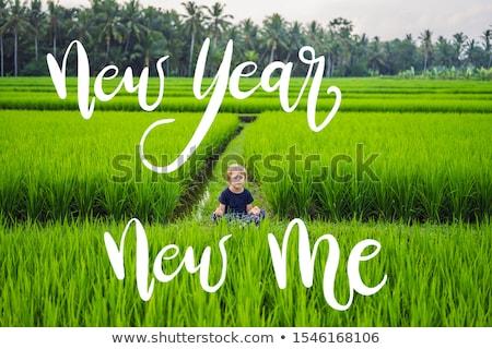 új év új engem kicsi fiú jóga Stock fotó © galitskaya