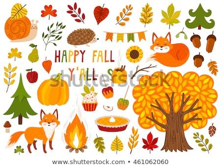 autumn leaves, chestnuts, acorns and pumpkins Stock photo © dolgachov