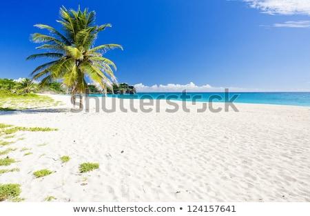Барбадос Карибы облака пейзаж морем лет Сток-фото © phbcz