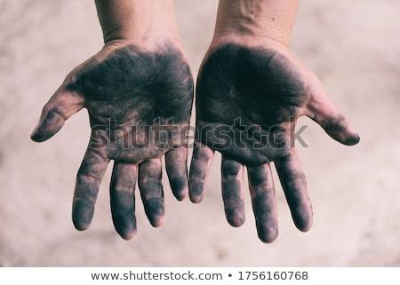 Peças carvão sujo palma isolado branco Foto stock © pixelman