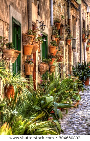 Plants pots in Valldemossa at Majorca Balearic island Stock photo © lunamarina