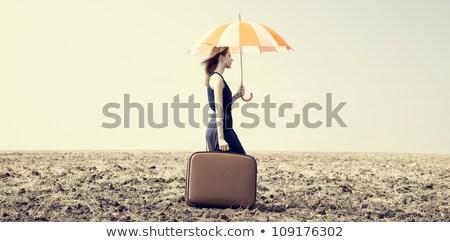 Stock fotó: Vörös · hajú · nő · lány · esernyő · bőrönd · szeles · fű