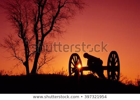 Civil War Cannon Stock photo © piedmontphoto