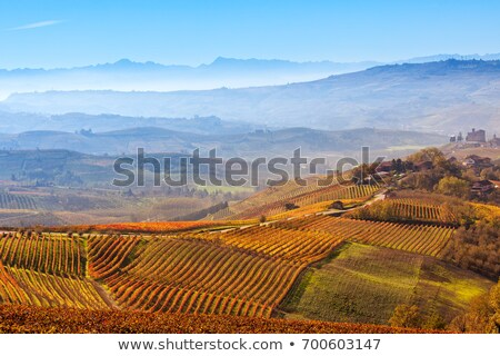 Haze over the hills. Piedmont, Northern Italy. Stock photo © rglinsky77
