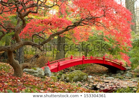 japanese bridge at fall stock photo © smithore