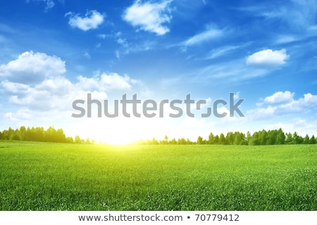 Stock photo: Bright sunset over green field.
