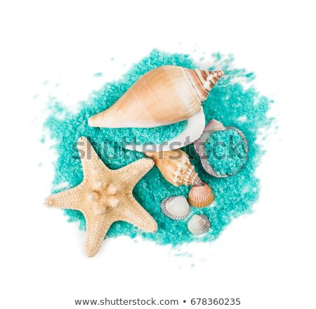 Stok fotoğraf: Colored Sea Salt And Starfish