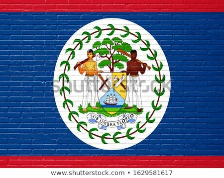 Zászló Belize téglafal festett grunge textúra Stock fotó © creisinger