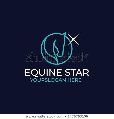 Star horse Stock photo © SKVORTSOVA