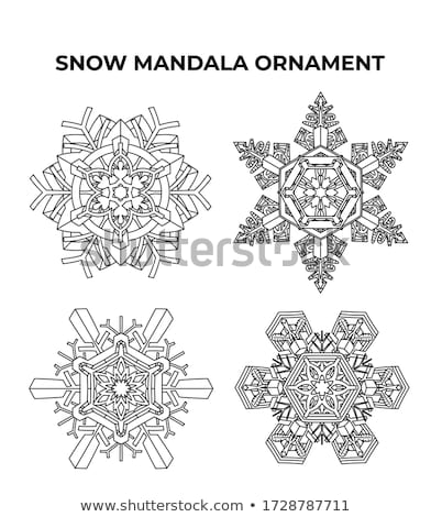 snow flake medallion Stock photo © robertosch