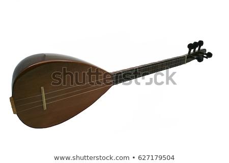 Aislado instrumento musical blanco tradicional largo música Foto stock © eldadcarin