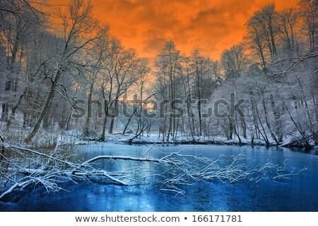 壮大な オレンジ 日没 後ろ 低い 山 ストックフォト © Discovod