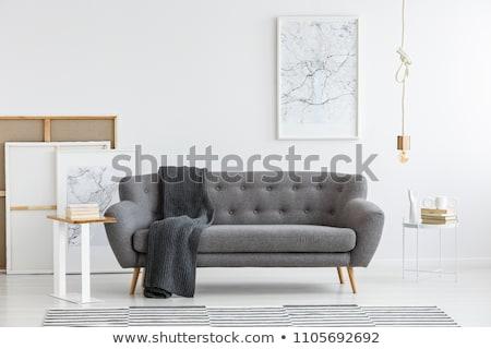 Szürke kanapé fal szoba divat fény Stock fotó © Ciklamen