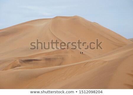 Dos personas caminando arena dos hombre Foto stock © Stocksnapper