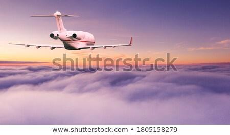 посадка · панорамный · синий · самолет · исполнительного - Сток-фото © moses