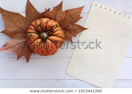 урожай таблице пустая страница осень желтый Сток-фото © neirfy