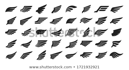Vecteur ailes silhouettes nature design Photo stock © beaubelle