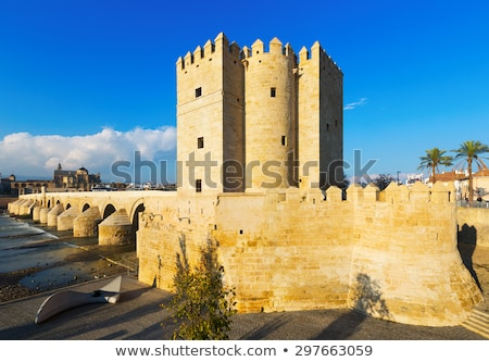 view of old roman bridge with calahorra tower spain stock photo © serpla