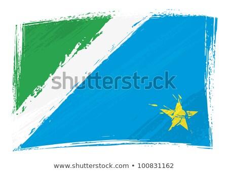 Grunge State Flag Of Mato Grosso Do Sul In Brazil Stok fotoğraf © Oxygen64