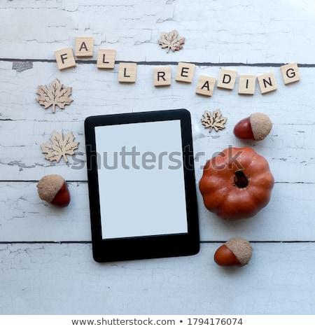 Books or Ereader Stock photo © Hofmeester