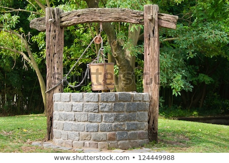 Old village well Stock photo © master1305