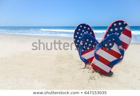 Amerikaanse vlag ingesteld leuk gelukkig achtergrond Stockfoto © x7vector