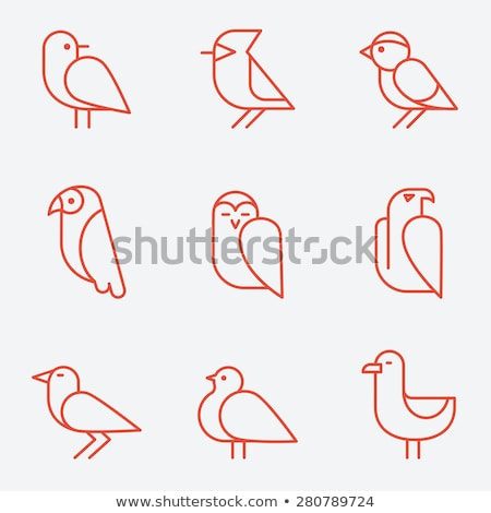 gull / bird - vector icon Stock photo © djdarkflower
