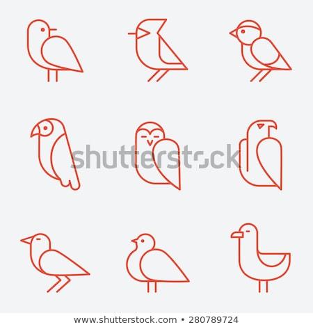鳥 · ベクトル · アイコン · デザイン · シルエット · フライ - ストックフォト © djdarkflower