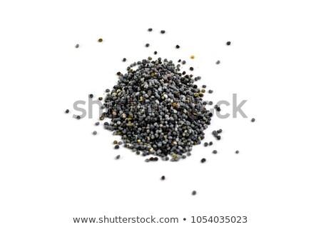 orgánico · blanco · amapola · semillas - foto stock © ziprashantzi