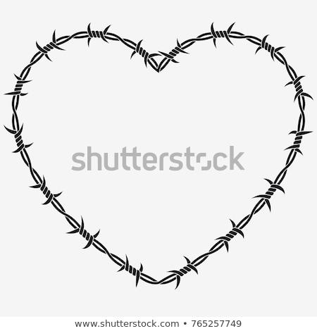 Kalp şekli dikenli tel yalıtılmış örnek vektör format Stok fotoğraf © orensila